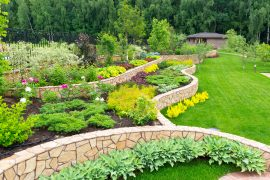 Backyards/Landscaping